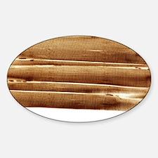 rograph - Sticker (Oval)