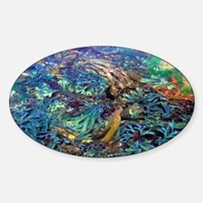Seaweeds - Sticker (Oval)