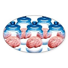 Preserved brains, artwork - Decal