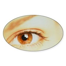 Woman's healthy brown eye - Decal