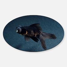 Black Moor ornamental fish - Decal