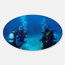 Diver communication system - Decal
