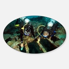 Diver exploring the Cross Wreck - Decal