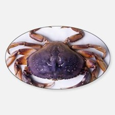 Dungeness crab - Sticker (Oval)