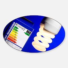 Energy-saving light bulb - Decal