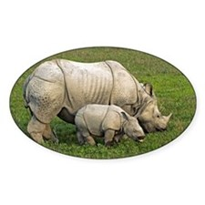 Indian rhinoceroses - Decal