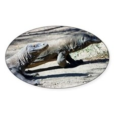 Komodo dragons - Decal