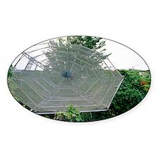 Satellite dish - Decal