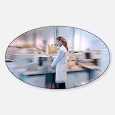 Scientist in a laboratory - Sticker (Oval)