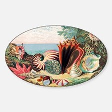 Sea shells - Sticker (Oval)