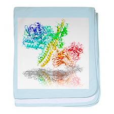 Botulinum toxin A, molecular model - Baby Blanket