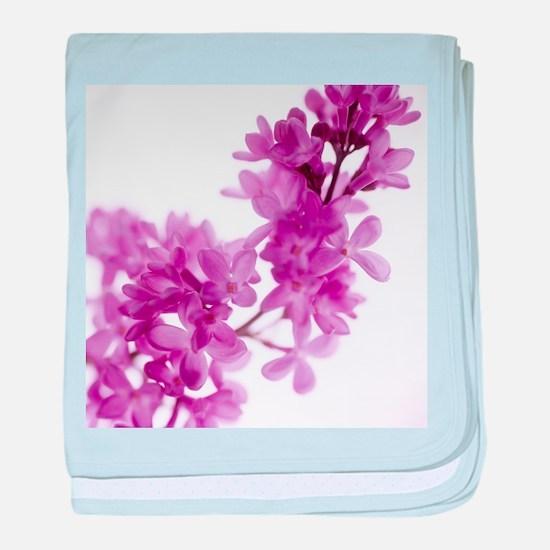 Lilac (Syringa vulgaris) - Baby Blanket
