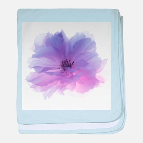 Rose flower (Rosa sp.) - Baby Blanket