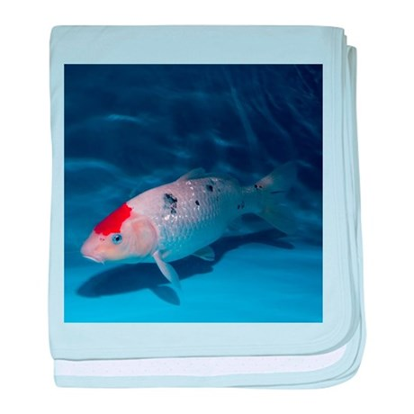 Sanke koi carp pool baby blanket by sciencephotos for Koi fish in kiddie pool