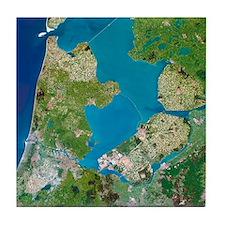 Polders, satellite image - Tile Coaster