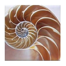 Nautilus shell - Tile Coaster