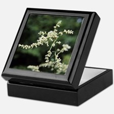 Artemisia flowers - Keepsake Box