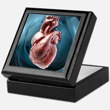 Human heart, artwork - Keepsake Box