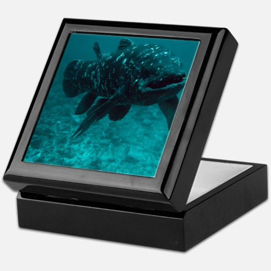 Coelacanth fish - Keepsake Box