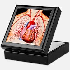 Human heart, artwork - Keepsake Box
