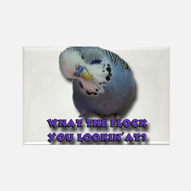 What the Flock You Lookin' At? Rectangle Magnet