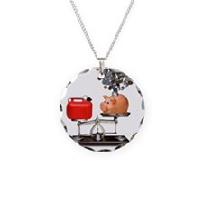 Cost of fuel - Necklace