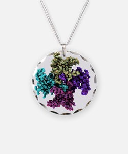 proteins - Necklace