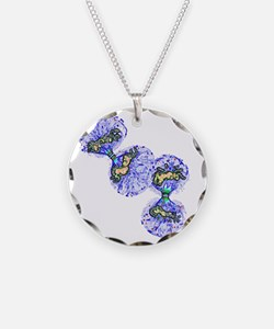 Cell division - Necklace