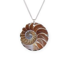 Nautilus shell - Necklace