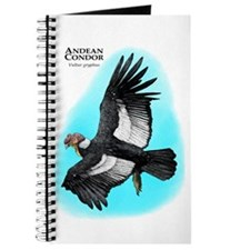 Andean Condor Journal