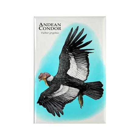 Andean Condor Rectangle Magnet