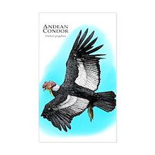 Andean Condor Decal