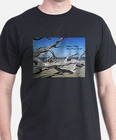 Driftwood Beach T-Shirt