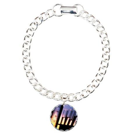 test tubes - Charm Bracelet, One Charm