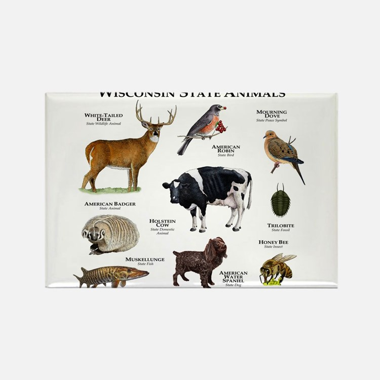 Wisconsin State Animals Rectangle Magnet