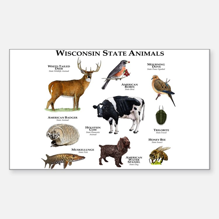 Wisconsin State Animals Decal