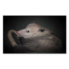 Sleepy Possum Rectangle Decal