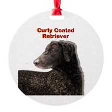 Curly Coated Retriever Round Ornament