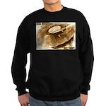 Real Music - Only Vinyl Sweatshirt (dark)