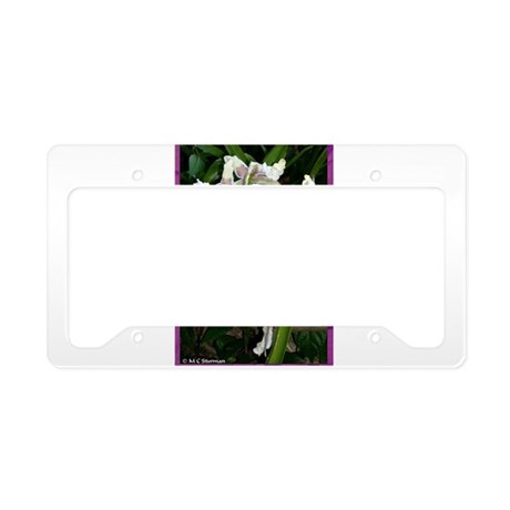 Orchids! Flower photo! License Plate Holder