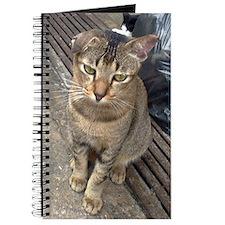 Flop eared cat journal