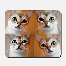 Happiness is a Singapura Mousepad