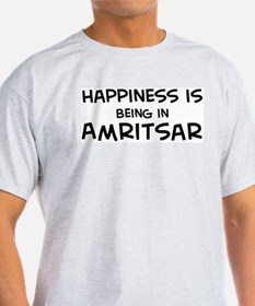 Happiness is Amritsar Ash Grey T-Shirt