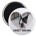 SWEET DREAMS Magnet