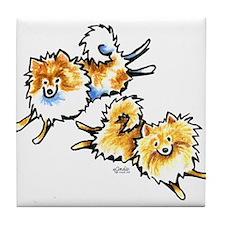 2 Cute Pomeranians Tile Coaster