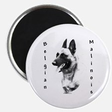 Malinois Charcoal Magnet