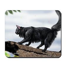 Norwegian forest Mousepad