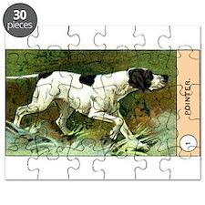 Antique 1908 English Pointer Dog Cigarette Card Pu