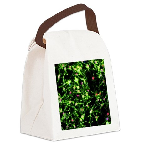micrograph - Canvas Lunch Bag