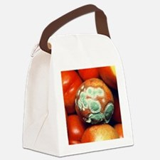 wth - Canvas Lunch Bag